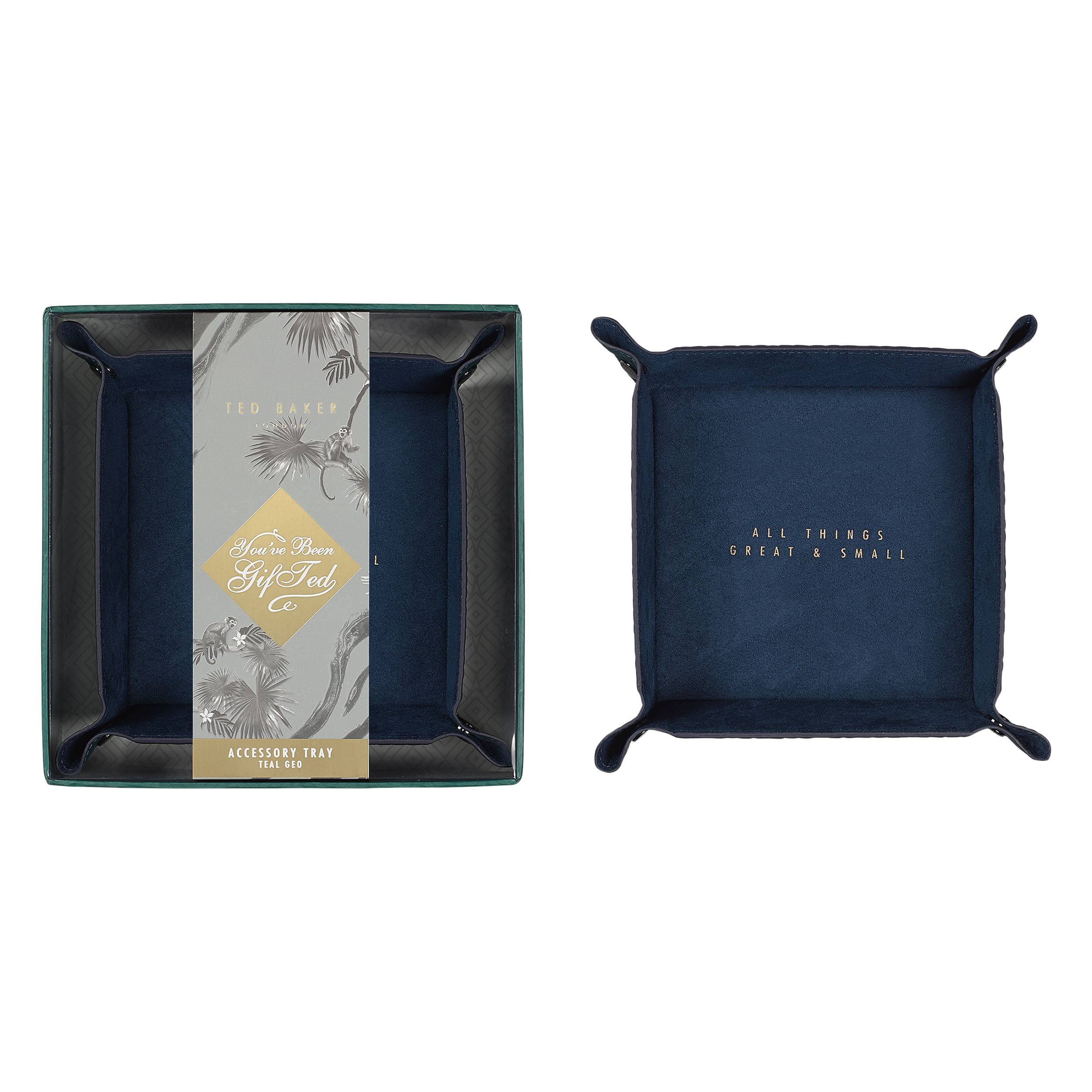 Accessory Tray, Teal