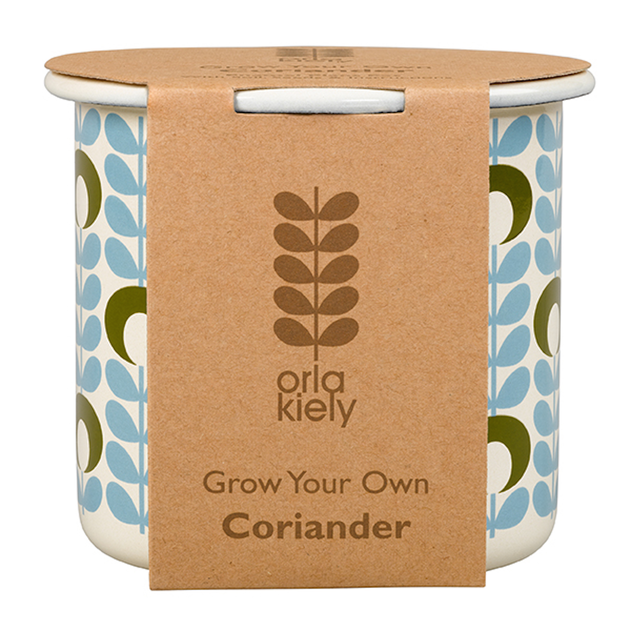 Grow Your Own Coriander