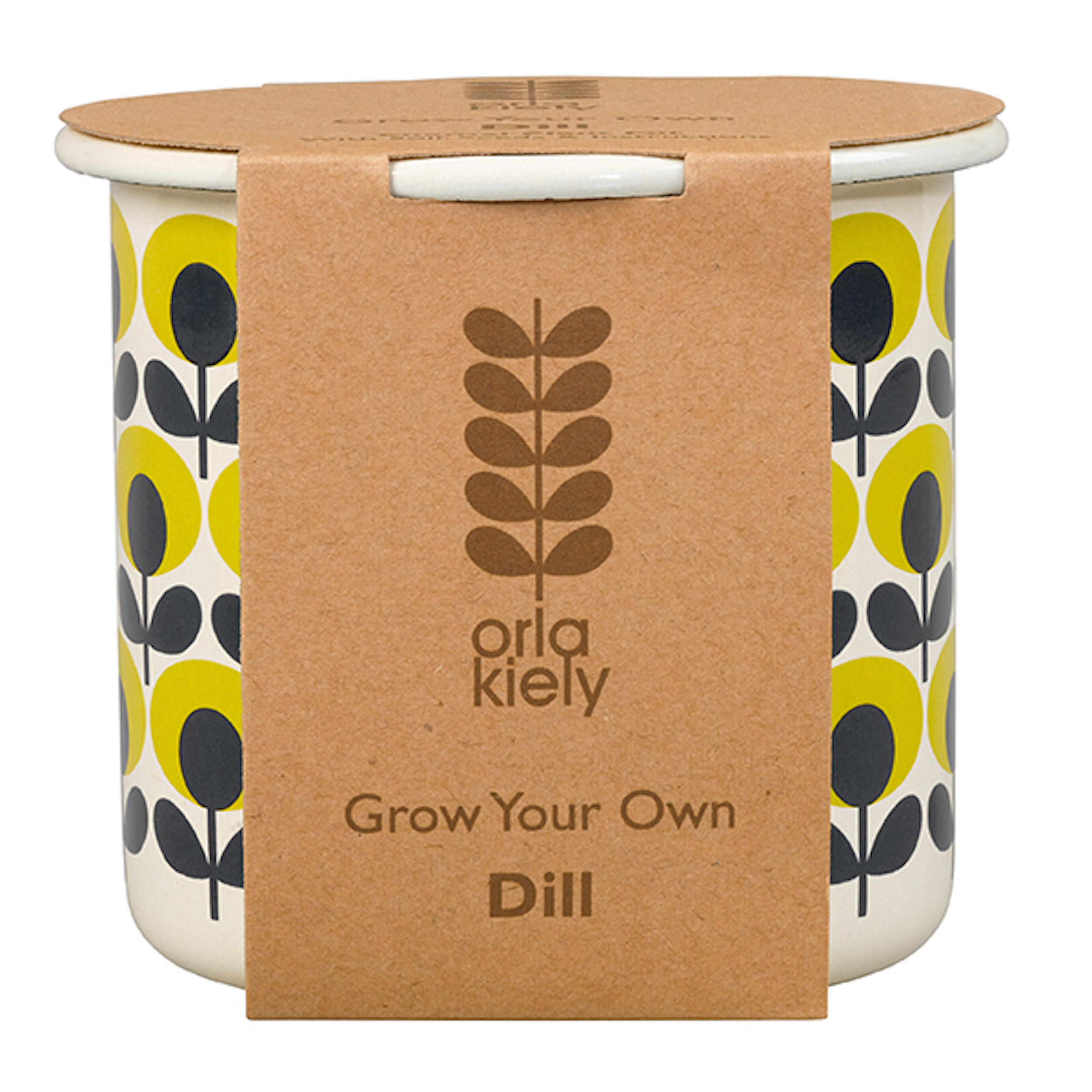 Grow Your Own Dill