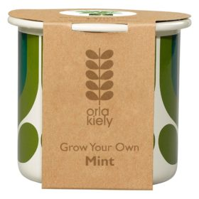 Grow Your Own, Striped Tulip, Jade, Mint