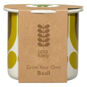 Grow Your Own, Striped Tulip, Sunflower, Basil